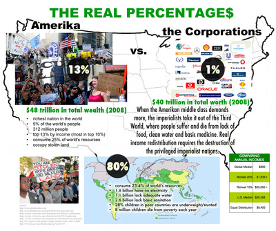 infographic on the 99% occupy wall street - the real percentages